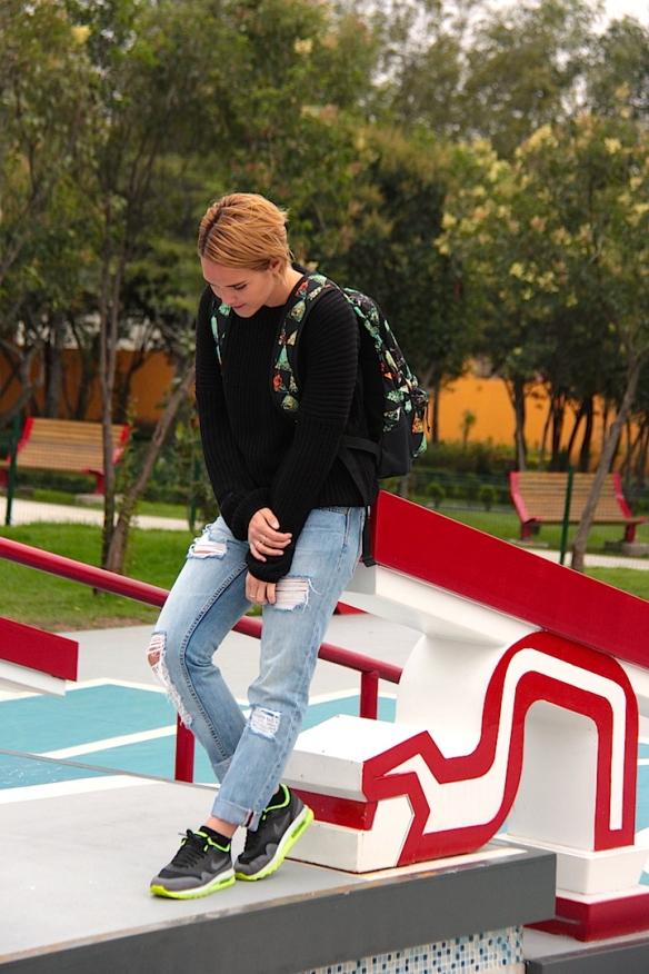 mexalex-skatepark-mexico-1
